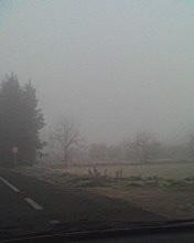 Winter in Lleida